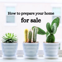 3 succulents in white pots text: How to prepare your home for sale